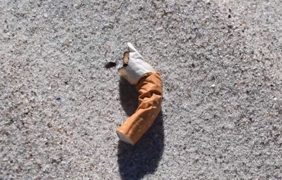 cigarettebutts1.JPG