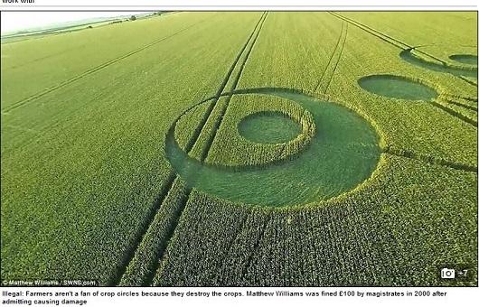 cropcircle4.JPG