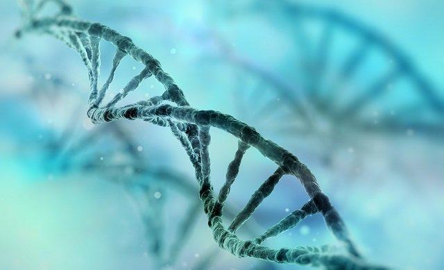 【革命的】死後も活動するゾンビ遺伝子が人体で確認される! 死の定義が激変する可能性も?の画像2