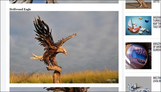 driftwood_2.jpg