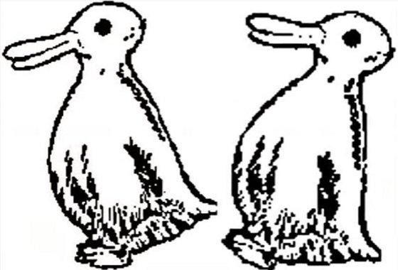 duckorrabbit2.JPG