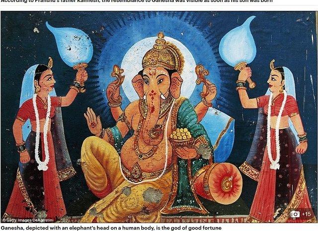 elephantshead1.JPG