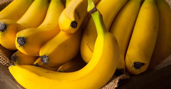 バナナが絶滅した後の未来が悲惨過ぎる! 全フルーツがバナナ化する悲劇が起きる可能性も!の画像1