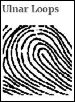 手相より当たる「指紋診断占い」がヤバすぎる! 14パターンで性格露呈、自己中で怒りっぽいタイプもの画像3
