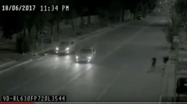 100%車に轢かれるはずだった少女が奇跡を起こす衝撃映像! 父親の霊が瞬間移動で娘を救った!?の画像3