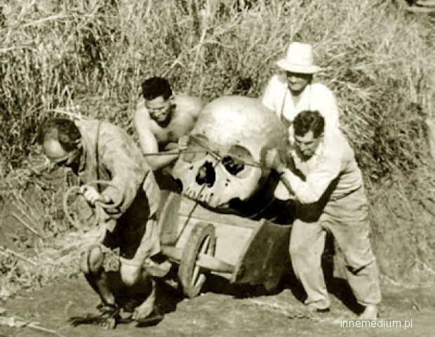 giant skull-excavation.jpg