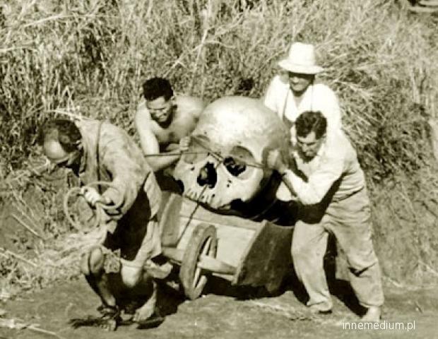 giant skull-excavation.jpg
