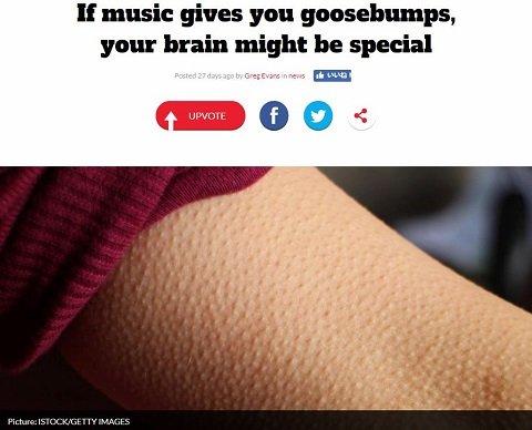 goosebumps1.JPG
