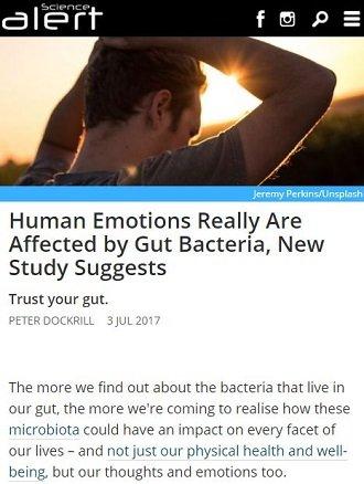gutbacteria1.JPG