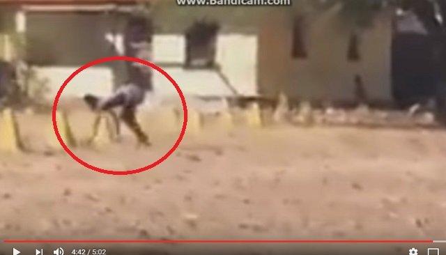 【衝撃動画】半分が犬、半分が人間のバケモノが激撮される! 全裸で爆走、獣姦による交配種か!?の画像2