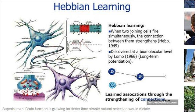 【ヘブ則】人間の脳はAIを超えが可能だった!? 数世代後には「スーパーヒューマン」出現か?の画像1