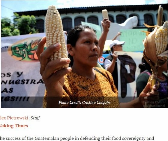 indigenousactivists1.JPG