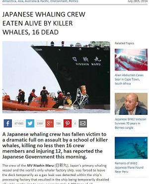 killerwhales2.JPG