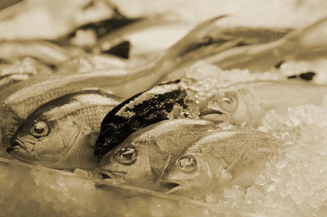 奇習! 魚市場に出入りする謎の抱かれ女 ― 肉体を売ってまで我が子を養ったシングルマザーたちの悲哀=九州北部の画像1
