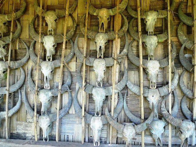 【画像多数】リアル首狩族「ナガ」の末裔が住む村に潜入! 国家権力を超越した王が持つ人歯ネックレスがヤバイの画像2