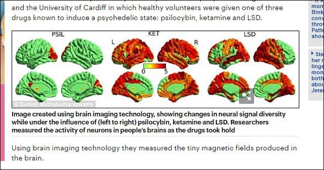 世界初、LSDが「高次の意識状態」を生み出していることが脳科学で判明!キマッている時は無我の境地か!?の画像2