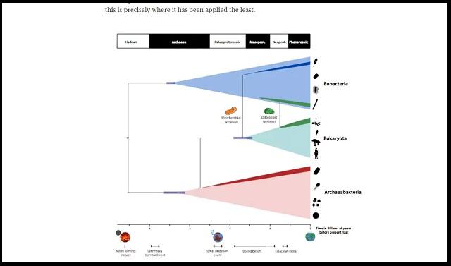 【ガチ】地球生命の最終共通祖先「LUCA」の出現時期が判明! 地球の殺菌消毒を生き延び…!? の画像2