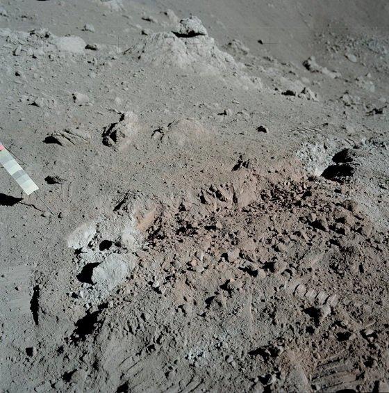 lunarhayfever3.JPG
