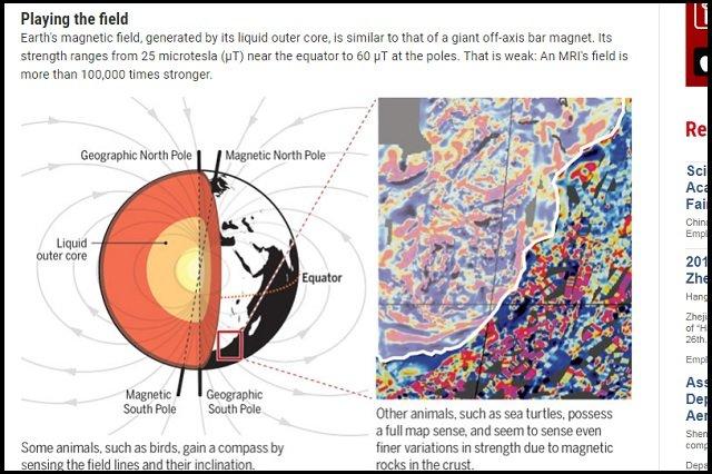 【ガチ】人間の「第六感」を著名科学者が発見! 脳内の「磁覚=シックスセンス」の存在が実験で証明される!の画像2