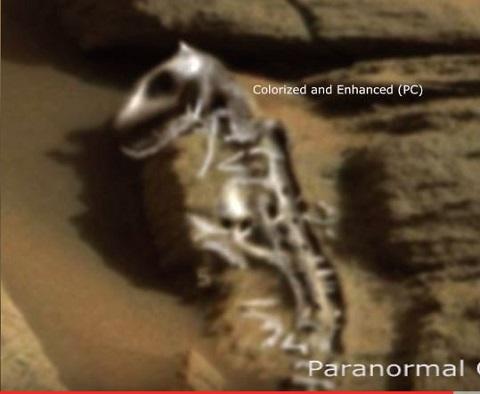 marsdinosaur1.JPG