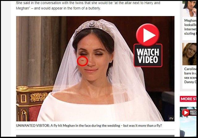 【衝撃】ヘンリー王子とメーガンの挙式に「転生ダイアナ妃」が参列していたことが判明! 新婦に祝福のキスも… 麗しい奇跡に英紙興奮の画像2