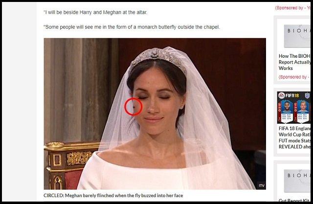 【衝撃】ヘンリー王子とメーガンの挙式に「転生ダイアナ妃」が参列していたことが判明! 新婦に祝福のキスも… 麗しい奇跡に英紙興奮の画像3