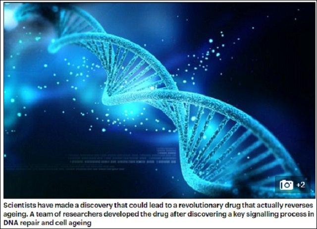 【NASA注目】60歳が20歳になる若返り薬「NMN」が3年以内に完成へ! 被曝したDNAも修復する奇跡レベルの効果の画像1