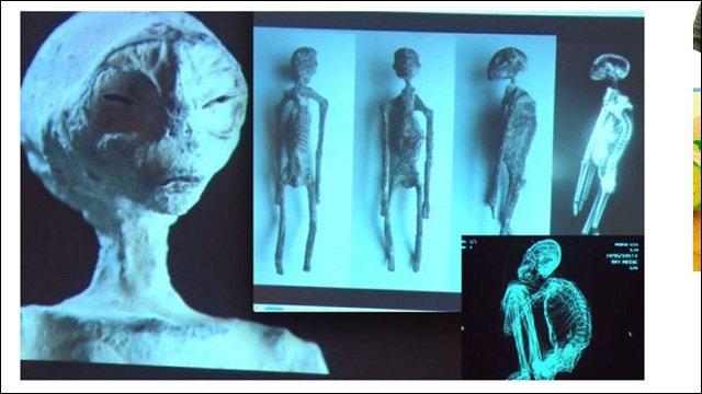 ナスカで発掘された「3本指の宇宙人ミイラ」が人類よりも爬虫類に近いことが濃厚! 古代人と共生していたレプティリアンの可能性 の画像1