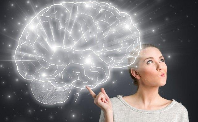 意識の発生源が特定される! 脳にグルッと絡み付く「いばらの王冠」とは?の画像1