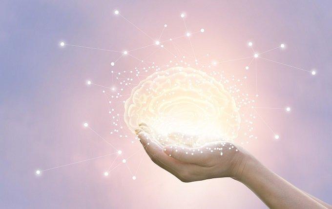 脳は大人になってもまだ成長している! 高齢でも新たな細胞が「芽生えている」ことが判明、科学界衝撃=米カリフォルニア大の画像1