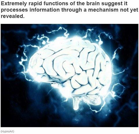 neuroquantology1.JPG