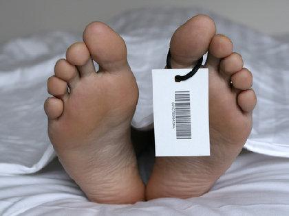 病理解剖後の臓器標本が産業廃棄物に!? 解剖学実習に用いられた遺体は、どのように火葬されているか?の画像1