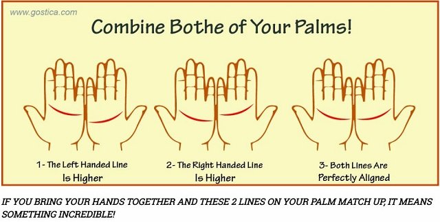 palmlines1.JPG