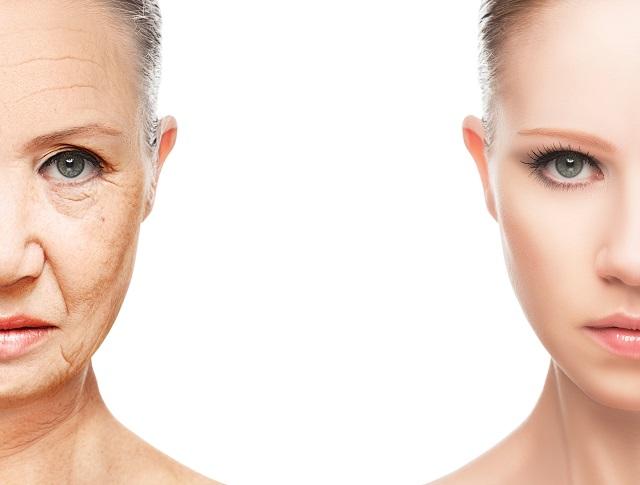 【史上初】人間の老化を逆転させる若返り物質がガチ開発される! 老化細胞が消える…驚異的リバースエイジング効果を確認!の画像1