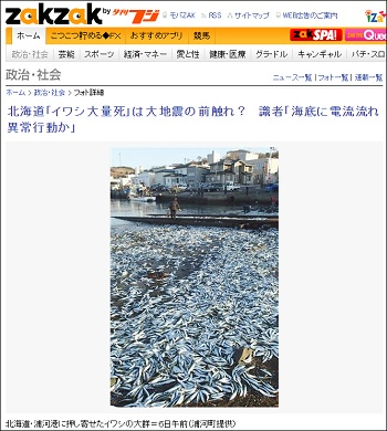 sardines_2.jpg