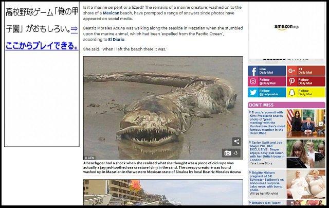 メキシコの浜辺で伝説の海洋UMA「シーサーペント」が打ち上げられたか! キモすぎる謎クリーチャーの正体とは?の画像1