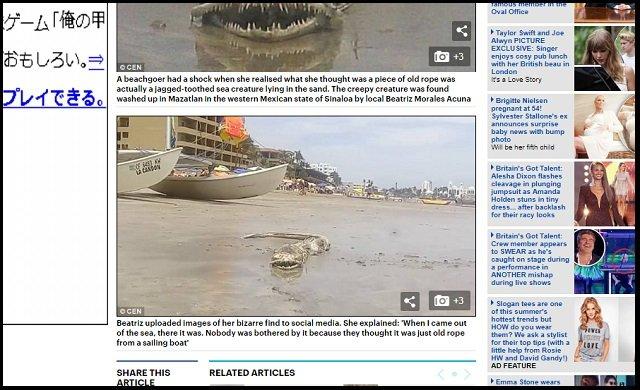 メキシコの浜辺で伝説の海洋UMA「シーサーペント」が打ち上げられたか! キモすぎる謎クリーチャーの正体とは?の画像2
