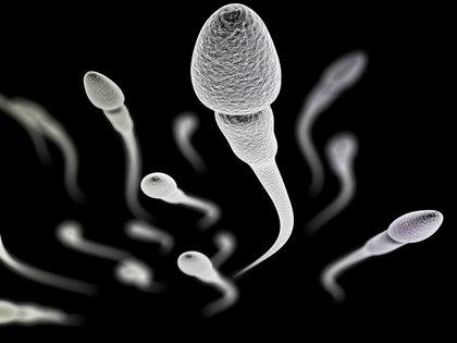 世界初「精液の成分研究プロジェクト」が始動!生活習慣の改善が男性の「受精力」を高めるの画像1