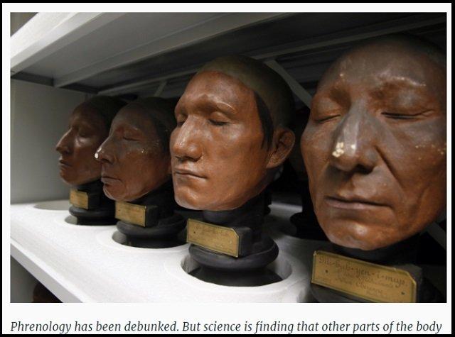 顔の形が性欲と関係していることが科学的に判明! 性豪・浮気性がひと目でわかる、顔の特徴とは?の画像1