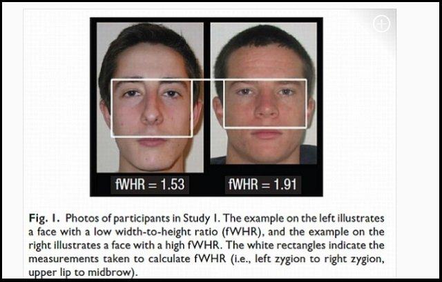 【ガチ】顔の形が性欲と関係していることが科学的に判明! 性豪・浮気性がひと目でわかる、顔の特徴とは?(最新研究)の画像2