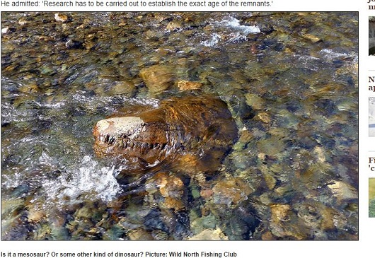 古代の巨大爬虫類型モンスターの頭がシベリアの川で発見される?1億5,000万年前の恐竜か?の画像1