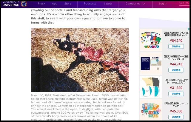 米政府がUFO牧場で極秘「人体実験」内部告発により発覚! 衝撃の一部始終…ペンタゴン重要人物ビゲロー氏も関与!の画像4