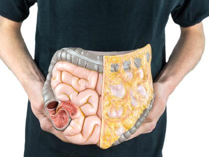 腸内細菌が「がん治療」を左右する!? 「免疫チェックポイント阻害薬」の効果に影響の画像1