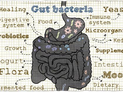 「腸内細菌」が「性格」も決める! 脳内物質に影響を与えて「ネガティブな感情」にの画像1