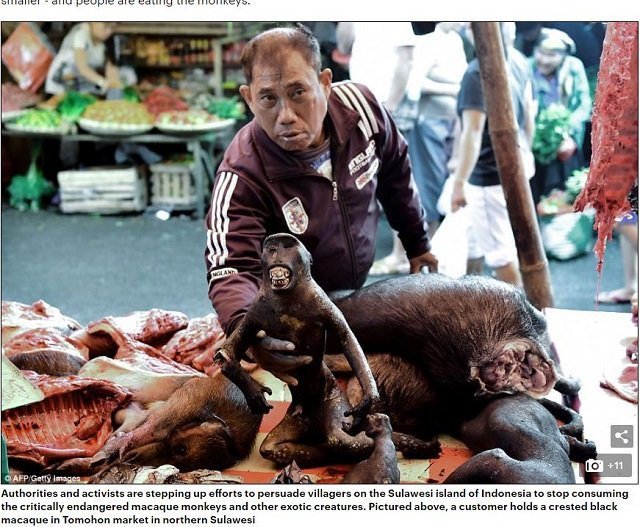 sulawesimarkets1.JPG