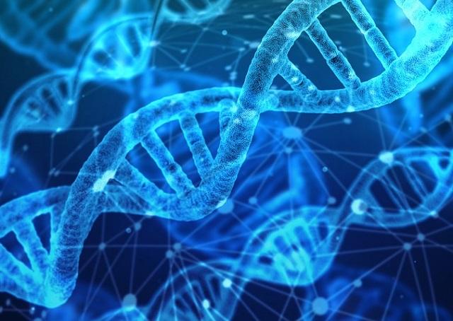 次世代DNA仮想通貨「Timicoin」が最強にスゴい! ブロックチェーンで自分の遺伝子情報を売買、利益ガッポリ!?の画像1
