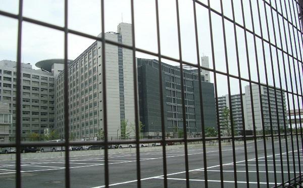 toukyokochijyo1118.jpg