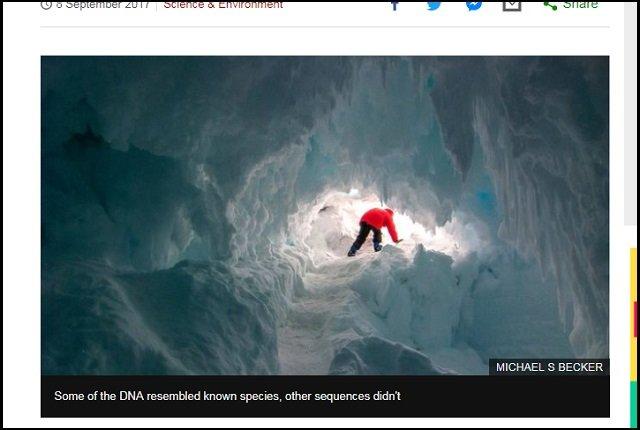 【ガチ】南極で「摂氏25度の温暖な洞窟」発見、BBC報道! 学者も興奮「謎の高等生物が生息、未知のDNA採取できる可能性」の画像3