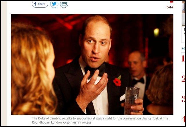 英ウィリアム王子が戦慄発言「アフリカは人口多すぎるから減らせ」! 英国王室=イルミナティによる人口削減計画の開始宣言か!?の画像2