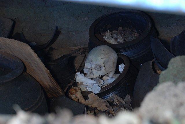 【奇葬】ヤドカリ葬の島『ニャーデバナ』、現地民が絶対に近づかない奄美大島の聖地を取材! 「肉を吸い取る音が聞こえてきた」の画像1